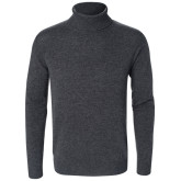Webster Rollneck