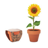 Sunflower - Terracotta skål \