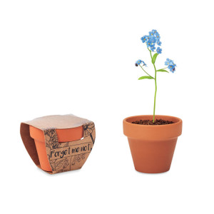 Forget Me Not - Terracotta skål \