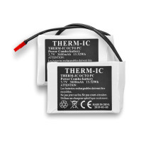 Therm-ic batteri+laddare