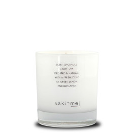 Scented Candle Björktuva